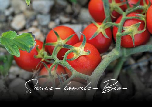 Nouvelle sauce tomate bio des pizzerias Basilic & Co